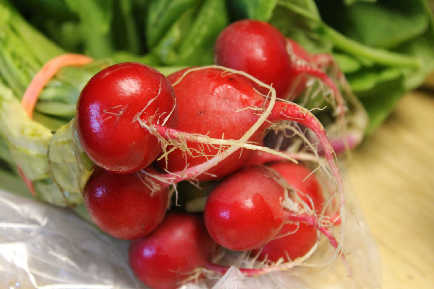 radishes resized